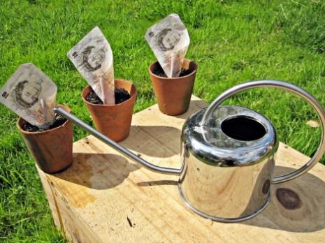 fpuk Planting money