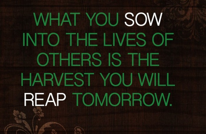 sowing & reaping